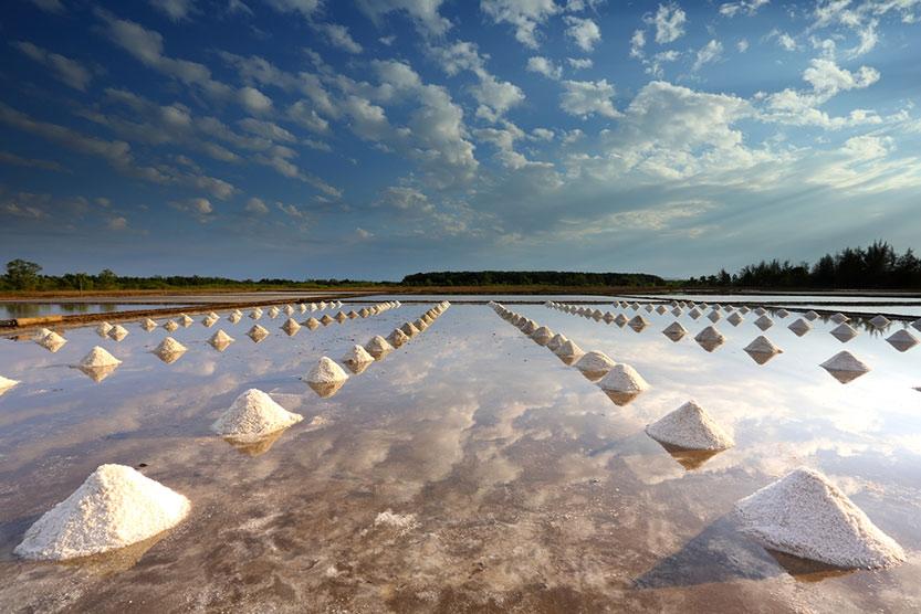 زایش بلورهای نمک در کف دریا
